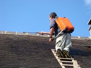 Traitement hydrofuge de toiture 13